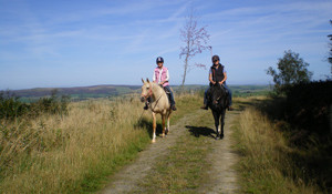 Underhill Riding Stables