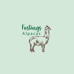Fostings Alpacas