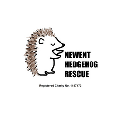 Newent Hedgehog Rescue