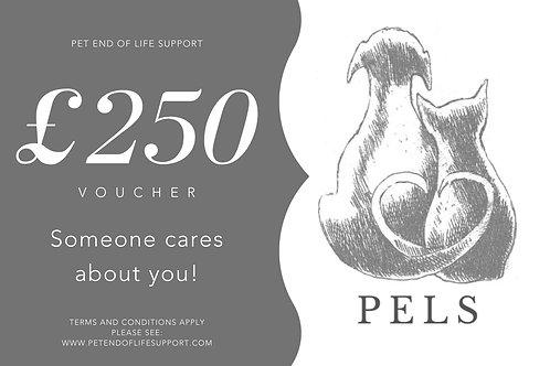 PELS Gift Voucher