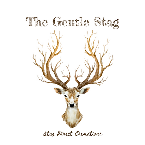 Gentle Stag