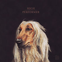 5K-HD_High-Performer_Cover-WEB-3000x3000