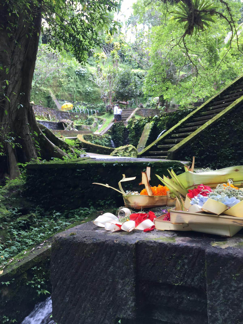 Balinese offering in a temple immerse in nature