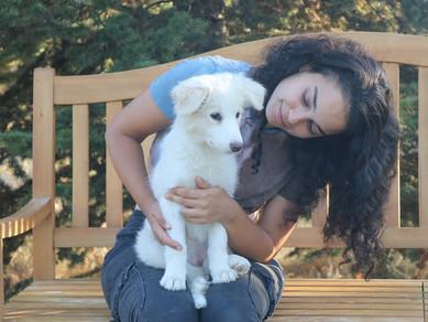 Köpek Eğitmeni Lara Kavuş'la Röportaj: 1. Kısım