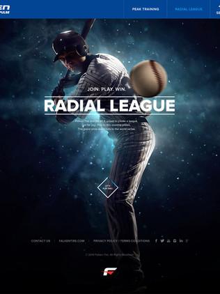 Falken Tire MLB Website