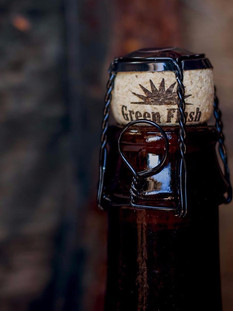 Green Flash Brewing Branding Guide