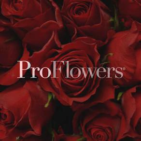 ProFlowers Valentine's Day Campaign - Copywriting