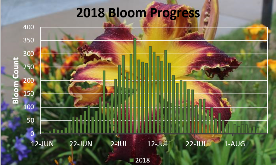 Bloom Count Graphic 8-7-18.png