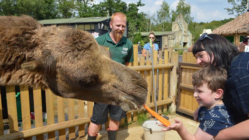 Best Zoos and Wildlife Parks In Dagenham