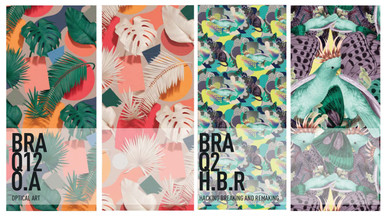 BRASILIANA STRATEGY DESIGN