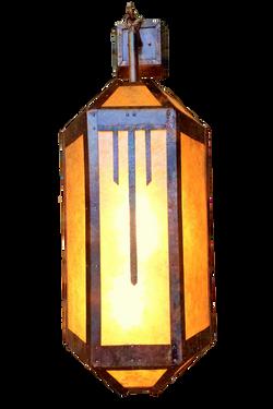 coleman entry light