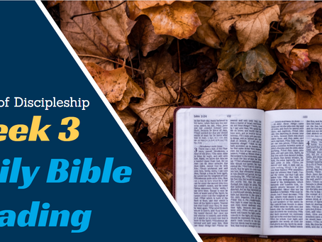Marks of discipleship Week 3: Daily Bible Reading