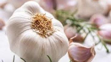 Garlic / Lasun