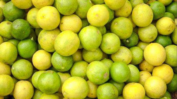 Lemon / Limbu