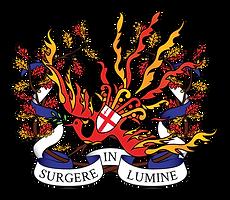 The Firebirds MCA London Logo
