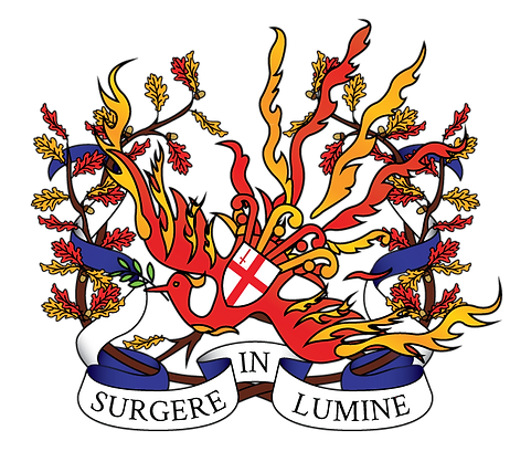 Th Firebirds Logo Surgere In Lumine