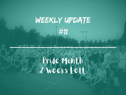 Week 11 - Weekly Update