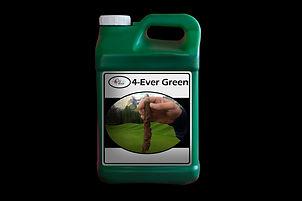 4-Ever Green Jug.jpg