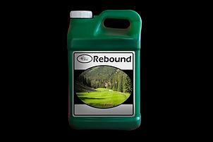 Rebound Jug.jpg
