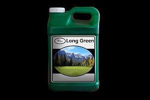 Long Green Jug.jpg