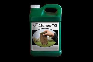 Senex-TG Jug.jpg