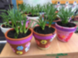 toddler plant pots.jpg