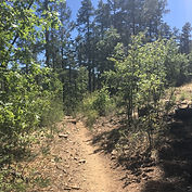 Spruce Mtn.jpg