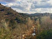 Seven Springs.jpg