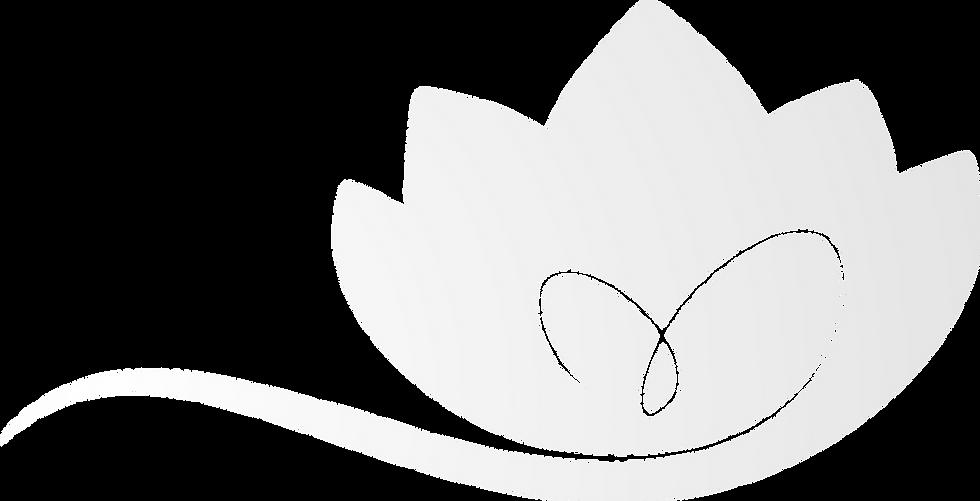 Actualise Lotus-seul Fond4.png