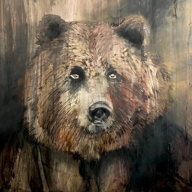 Brown Bear in Sunday Best