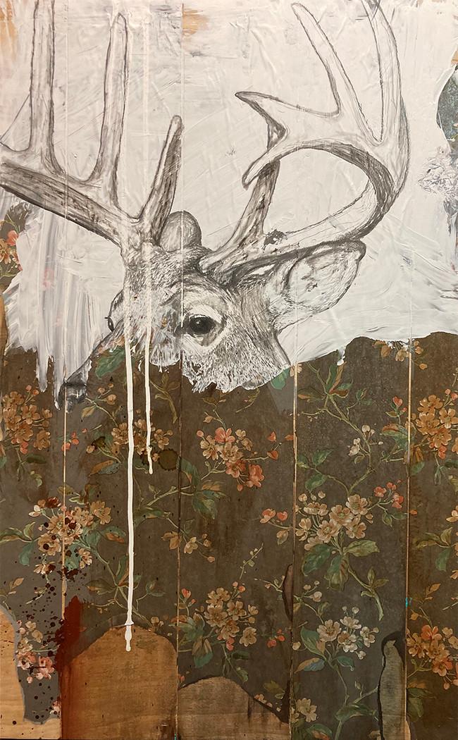 deer ops 1