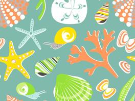 Seashells – a perennial favourite