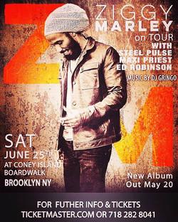 ziggy marley djgringo June25 2016