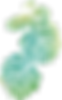 wandtattoo-palmenblatter-aquarell-10466.
