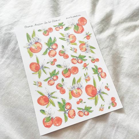 Orange Blossom Sketch Stickers