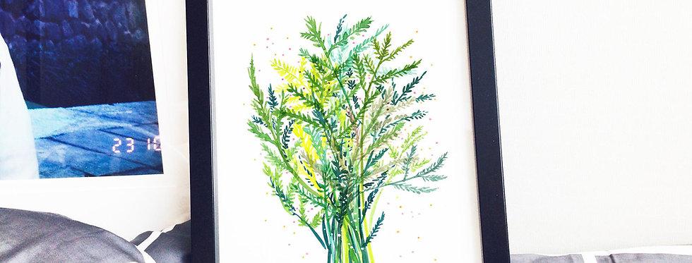 Asparagus Fern Poster