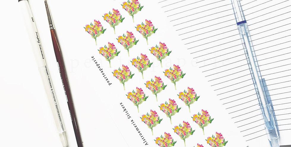 Alstroemeria flower stickers