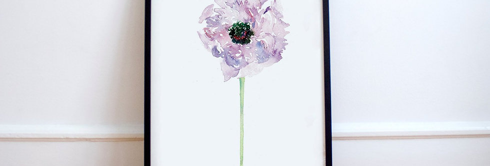 Flower Series 006