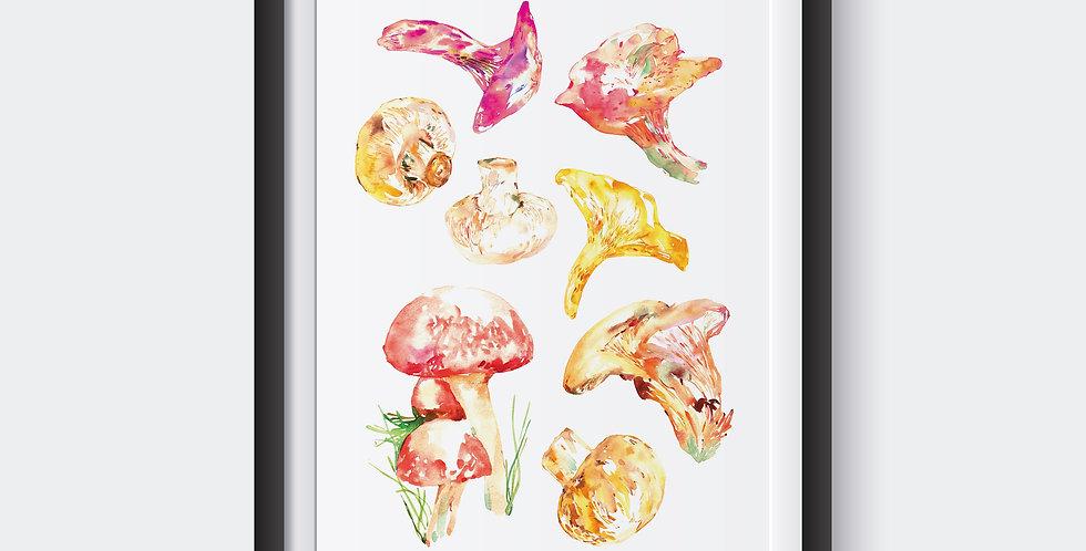 Watercolored Mushrooms