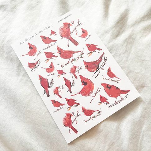 Red Northern Cardinal Stickers