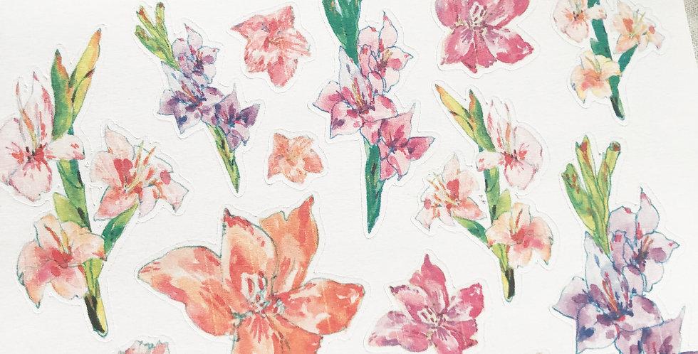 Gladiolus Flower Garden Sketch Stickers