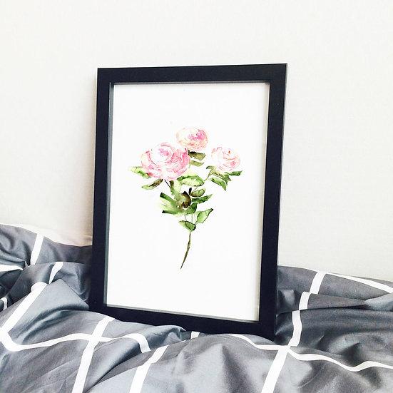 Pink Roses Watercolor Poster