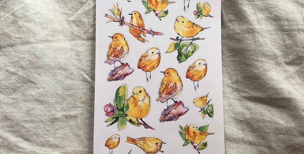 Yellow Wild Warblers Stickers
