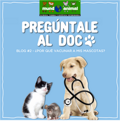 ¿Por qué vacunar a mis mascotas?
