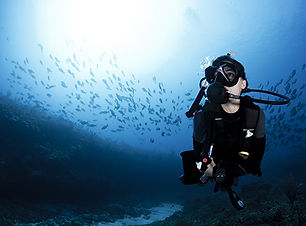 Diver Small.jpg