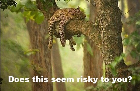 Blog risk.png