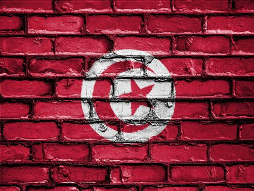 La Tunisie ou les limites de la démocratie représentative