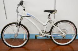 102 Schwinn Midtown Bike