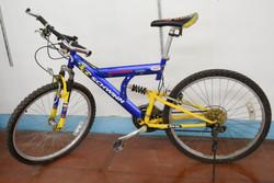 106 Schwinn Protec Bike