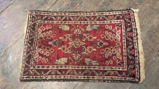 Small Oriental rug